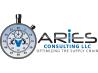 Aries Consulting LLC